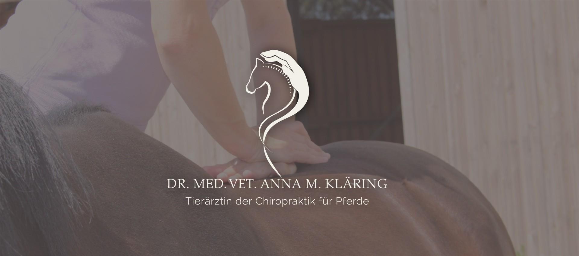 Chiropraktik für Pferde